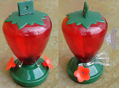 Strawberry Hummingbird Window Feeder or Hanging American Made In USA