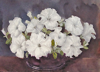 Marion Broom - Petunias - Listed Artist Watercolor - C. 1920 - No Reserve