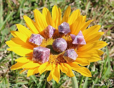 Lepidolite Sacred Geometry 7 Set with Merkaba Star - Free & Fast Shipping