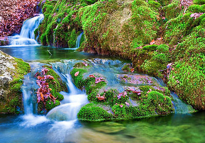 Cascades Nature Stream Waterfall 3D Full Wall Mural Photo Wallpaper Home Dec Kid