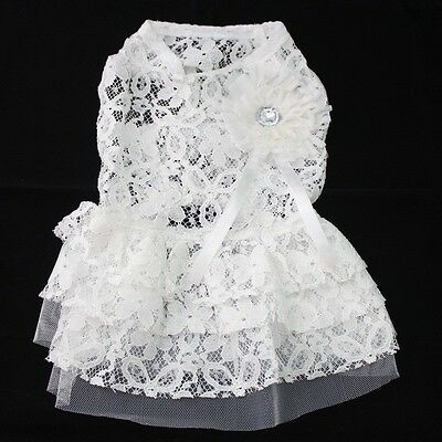 White Soft Dog Dress Flower-Shaped design,Pet Skirt clothes,5 sizes available