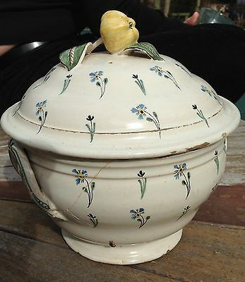 18th/9th Century French Tureen, Bourbon sprig with Quince or Apple on lid