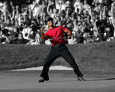 TIGER WOODS 16x20 Professionally Printed Photo