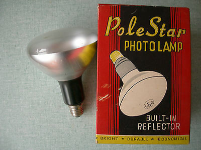 Ampoule Photo Studio Video – 500 Watts Polestar Lamp – Light Bulb Lighting