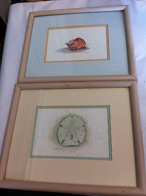 """D. Morgan Set of 2 Seashell Prints Signed Framed Matted 11"""" x 9"""" Under Glass"""