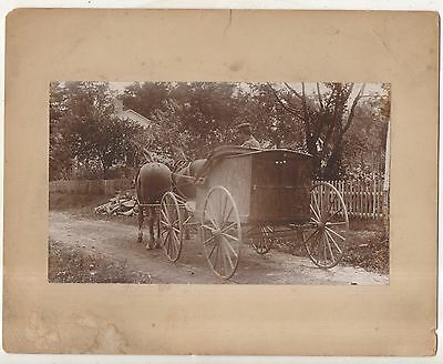 Horse Drawn Delivery Wagon, Antique ca 1900 Buggy Matted Photograph