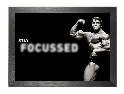 Arnold Schwarzenegger Bodybuilder Actor Gym Motivation Stay Focused Quote Poster