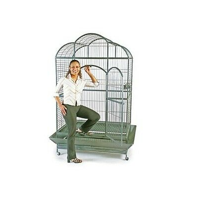 Macaw Bird Cage Extra Large Six Foot Dometop Gray Rolling Parrot Big Birds Home