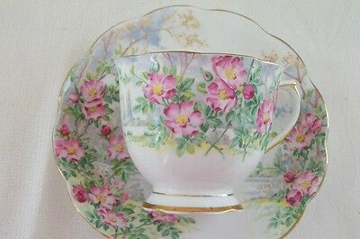 "Royal Albert ""Wild Rose"" Tea Cup and Saucer"