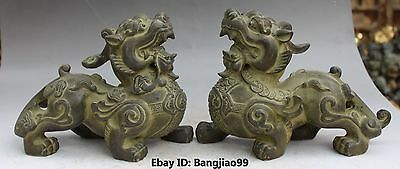 23CM Chinese Folk Bronze Fengshui Guardian Wealth Money Pixiu Beast Pair Statue