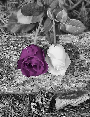 Black White Purple Rose Flower Decorative Photography Home Wall Art Picture