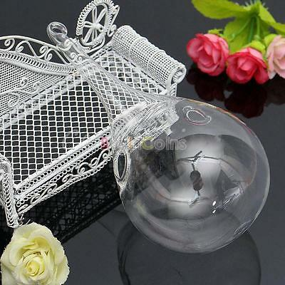 Clear Hanging Glass Flower Plant Vase Hydroponic Container Pot Home Decor