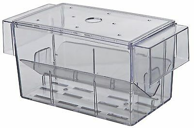 Fish Hatchery 2 Way Breeding Trap With Lid Guppy Endler Molly Fry