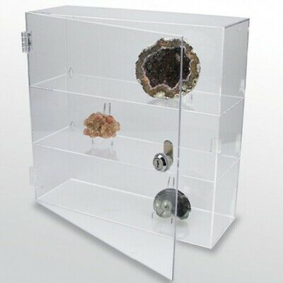 Rock Collection Display Case Acrylic Glass Curio 9-1/2""