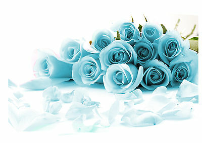 """Large Duck Egg Blue Roses Canvas Picture Wall Art A1 34"""" X 20"""""""