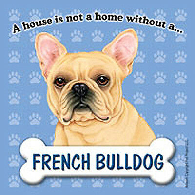 French Bulldog Magnet - House Is Not A Home