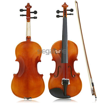 4/4 Full Size Violin w/ Hard Case Shoulder Rest Bow,Rosin and Extra Strings GSD1