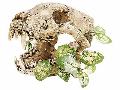 Dinosaur Skull with Silk Plants Aquarium Fish Cave Ornament Terrarium Decoration