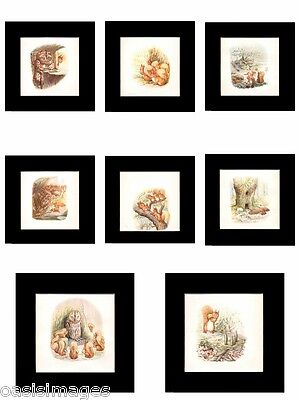 BEATRIX POTTER tale of SQUIRREL NUTKIN Original antique print 1903 mounted