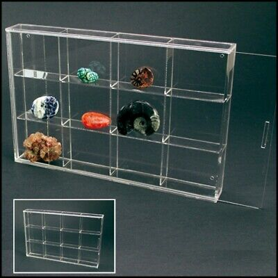 Rock Display Case-Acrylic Glass Curio with 12 Comparments 2-1/2""