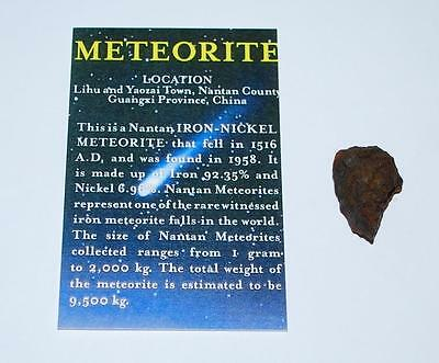 NANTAN IRON METEORITE with Color Information Card 11-20 gram size #193 2o