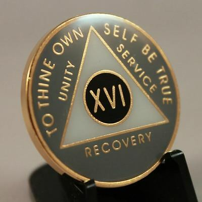 Exclusive 9 Yr Grey White & Black  AA Recovery Medallion /AA Coins /Medallions