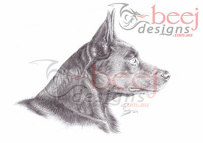 Kelpie Dog Pencil Drawing - A4 - side view realistic fine artwork poster Print