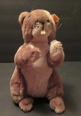 Steiff Cosy Nagy Beaver, Number 5396/22, Circa 1986 - 1988 With Button