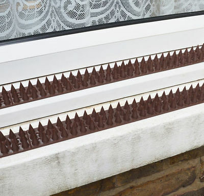 ANTI CLIMB GARDEN Fence Outdoor Spikes Strips Security Wall Prickle Guard  Pest 2