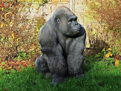 Life Size Incredible Silverback Gorilla, Ultra Realistic, Indoor Or Out, Large!