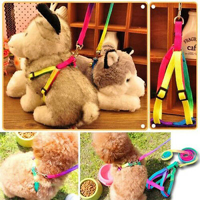 1PCS Adjustable Pet Dog Puppy Cat Rabbit Kitten Nylon Harness Collar Leash Lead
