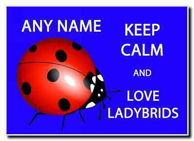 Keep Calm And Love Ladybirds Personalised Jumbo Magnet