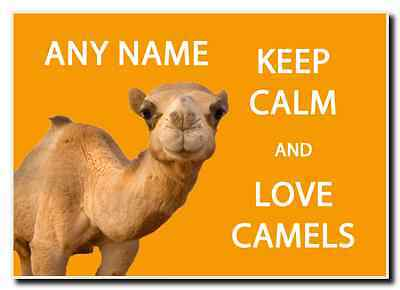 Keep Calm And Love Camels Personalised Jumbo Magnet