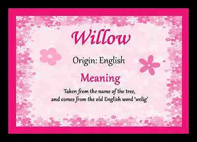 Willow Personalised Name Meaning Placemat