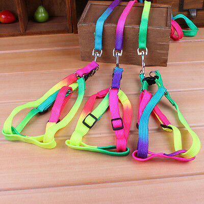 New Colorful Pet Dog Puppy Cat Rabbit Kitten Nylon Harness Collar Leash Lead