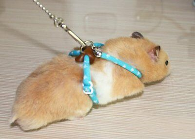 Hamster - Ferret - Small Animal Harness - Lead - Leash - NO PACKAGING - BLUE