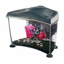 PET-53933 Marina Betta Kit Graphite (7ltr)
