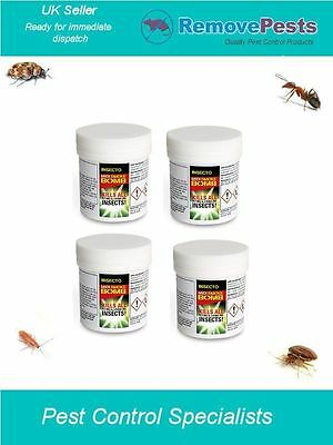 Ants flying ant fruit fly insect killer poison treatment smoke treatment Bomb IN