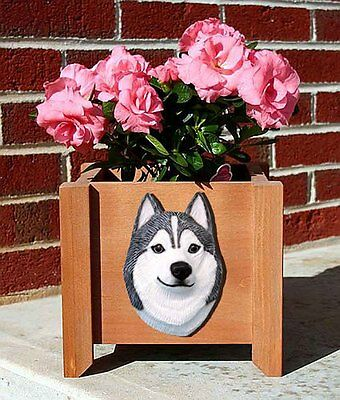 Siberian Husky Planter Flower Pot Grey White