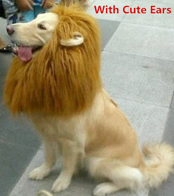 Pet Costume Lion Mane Wig Dog Sanda Clothes Festival Fancy Dress up With Ears