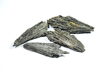 50g Natural Rough Black Kyanite Lot (Blkkyan01)