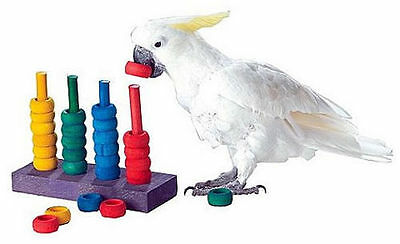Teacher Toy Parrot Learning Game ZooMax Bird Toy Teaching Trick Parrots