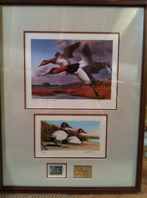 1989 Rhode Island Duck Stamp and Print Framed Executive Edition By Steiner