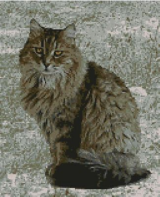 "Tabby Cat Kitten Long Haired Counted Cross Stitch Kit 9.5"" x 11.25"" C2346"