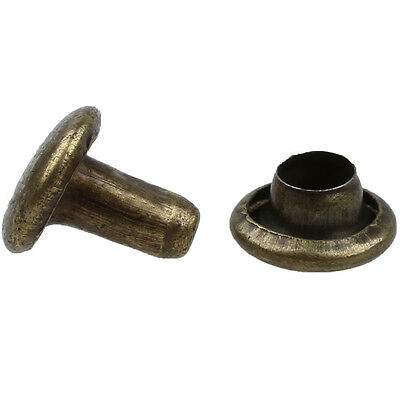 100 Sets 6mm Round Antique Brass Rivets Rapid Studs LW
