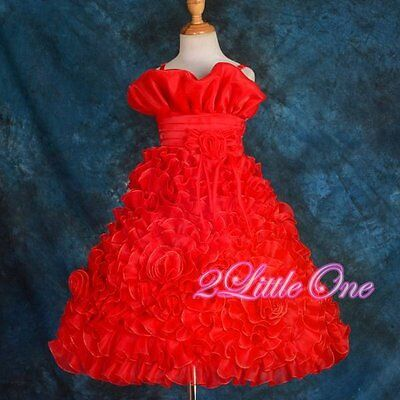 Organza Rosettes Formal Dress Wedding Flower Girl Pageant Party Kid 2T-10 FG068