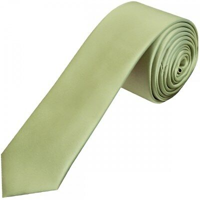 TiesRus Plain Sage Green Satin Skinny Boys Tie Wedding Tie Neck Tie Prom Tie