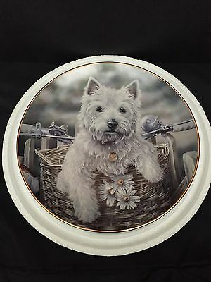 """Danbury Mint """"Hitching a Ride"""" West Highland Terrier Collector Plate - MINT"""