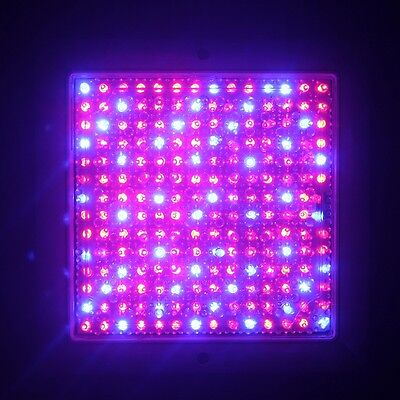 196LED Grow Light Full Specturm for Greenhouse/Indoor Plant Flowering Growing