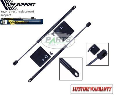 2 REAR WINDOW GLASS LIFT SUPPORTS SHOCKS STRUTS ARMS PROPS RODS DAMPER